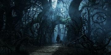 OZ Dark Forest