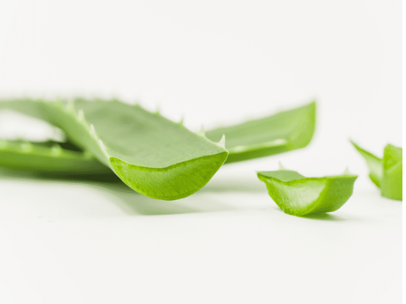 Aloe Vera For Pimple Reduction