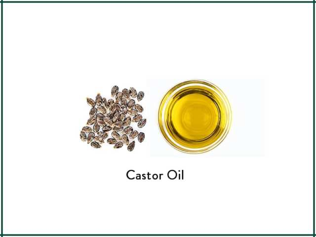 Castor Oil For Thicker Nourished Hair