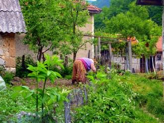 Rural Bosnia