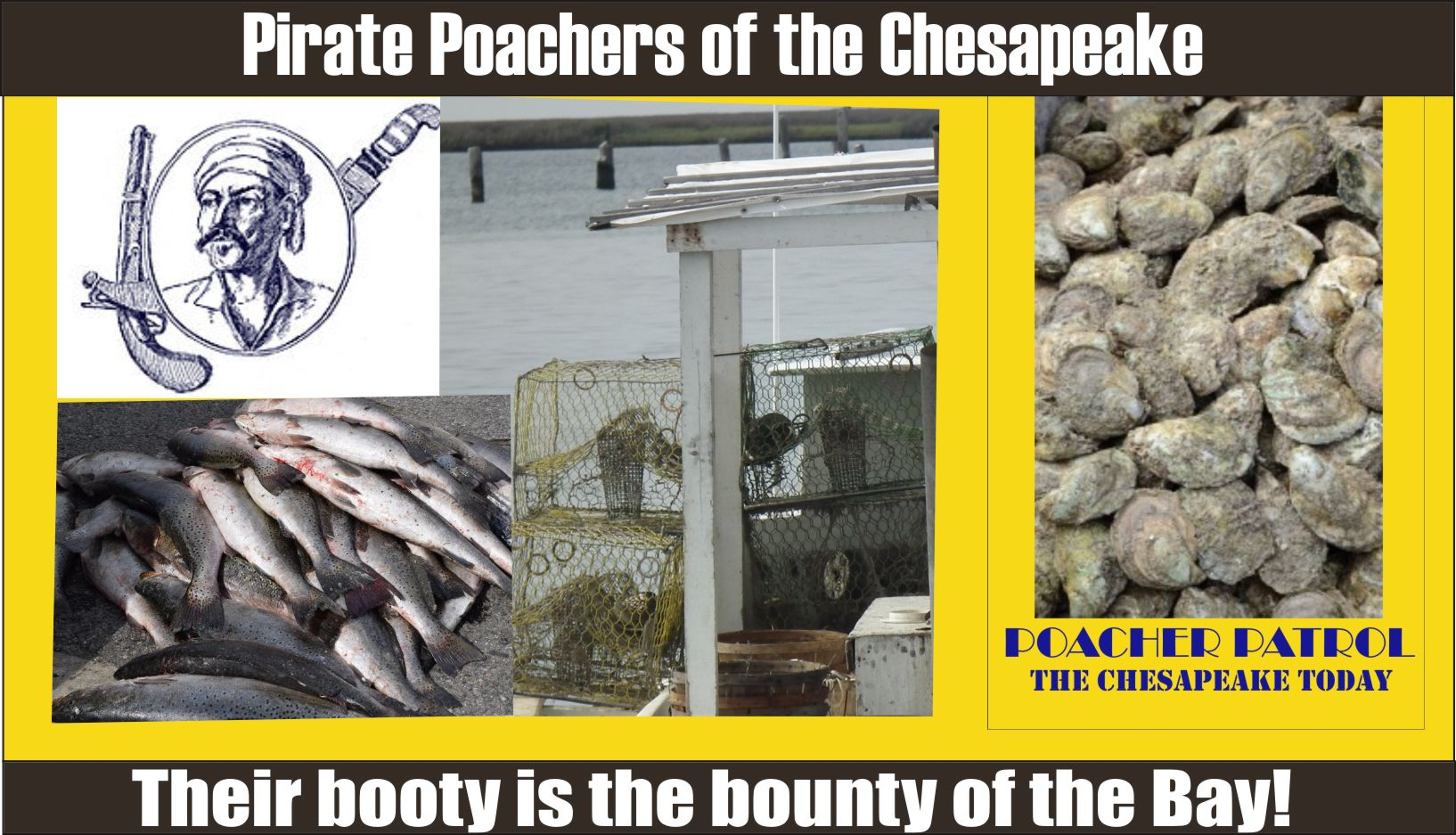 OUTLAW PIRATE POACHERS OF THE CHESAPEAKE: Commerical fishing suspensions/revocation and aquaculture suspensions for May 30, 2019