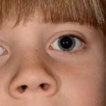 Pupil Response to Predict Depression Risk in Children