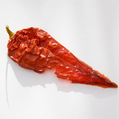 Dried Superhot Chillies Chillies from The Chilli Guy