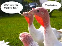 Thankful for Vegetarians