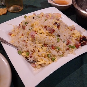 young-chow-fried-rice-orient-odyssey