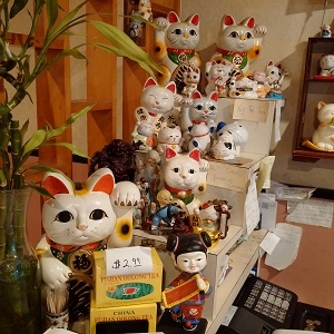 ho-wan-cats