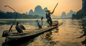 fishing-chinese-seafood-dishes