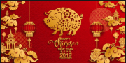 GUNG HAY FAT CHOY!  The Year of the Pig!