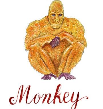 Year of the Monkey – 2020 Horoscope & Feng Shui Forecast