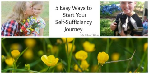 5 Easy Ways to Start Your Self-Sufficiency Journey
