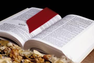 Scripture 3