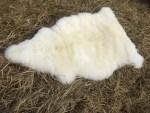 Fluffy sheepskin