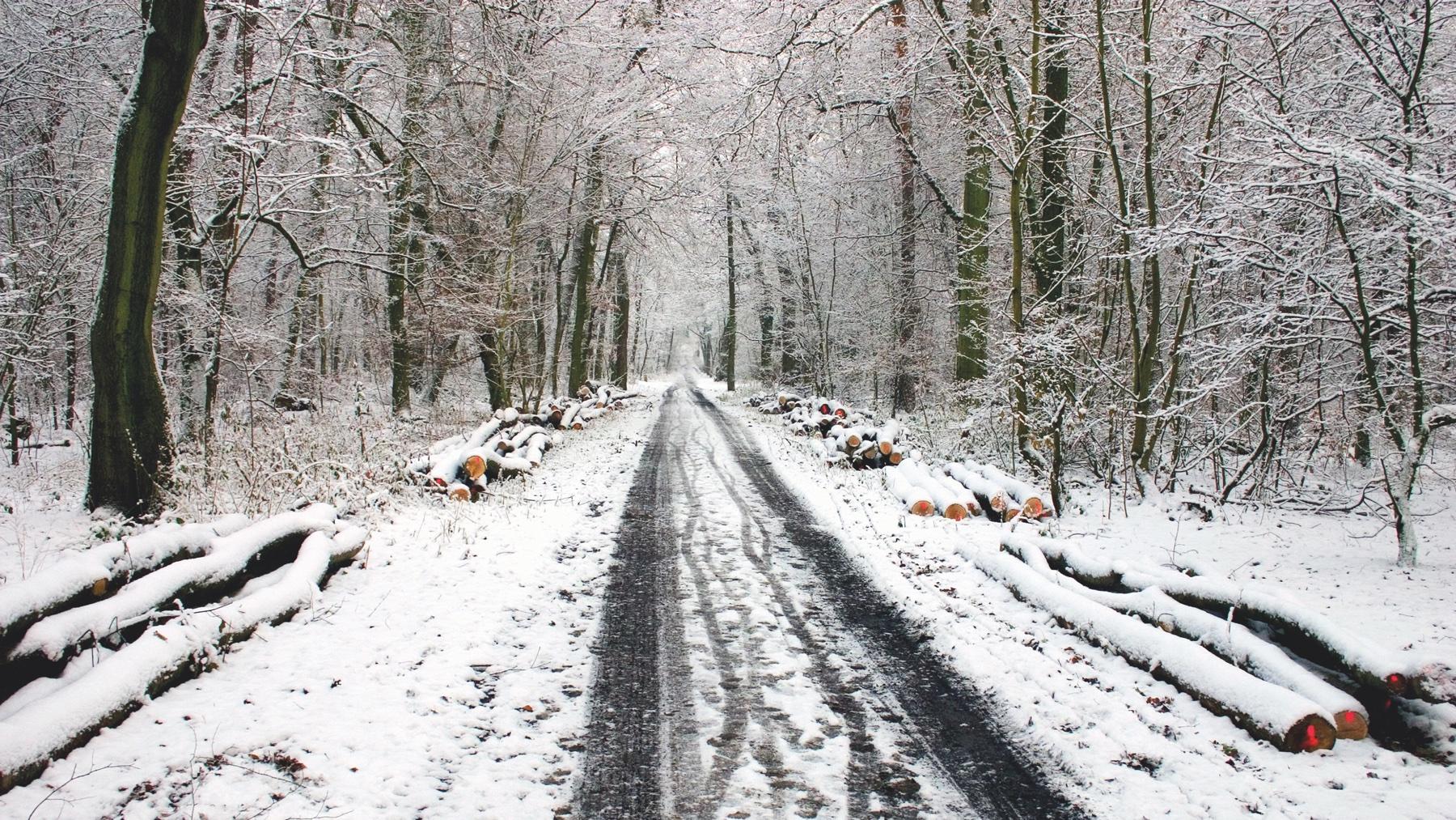 winter-593479