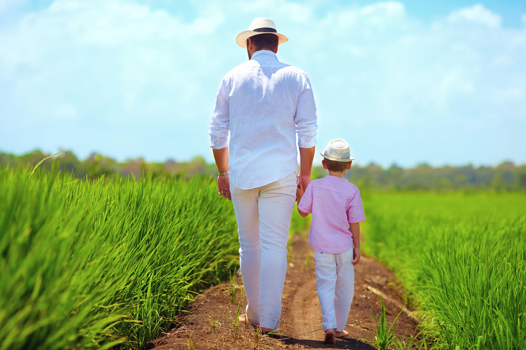 barefoot father and son walking through the rice field
