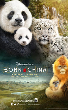 Image result for Born in china movie poster