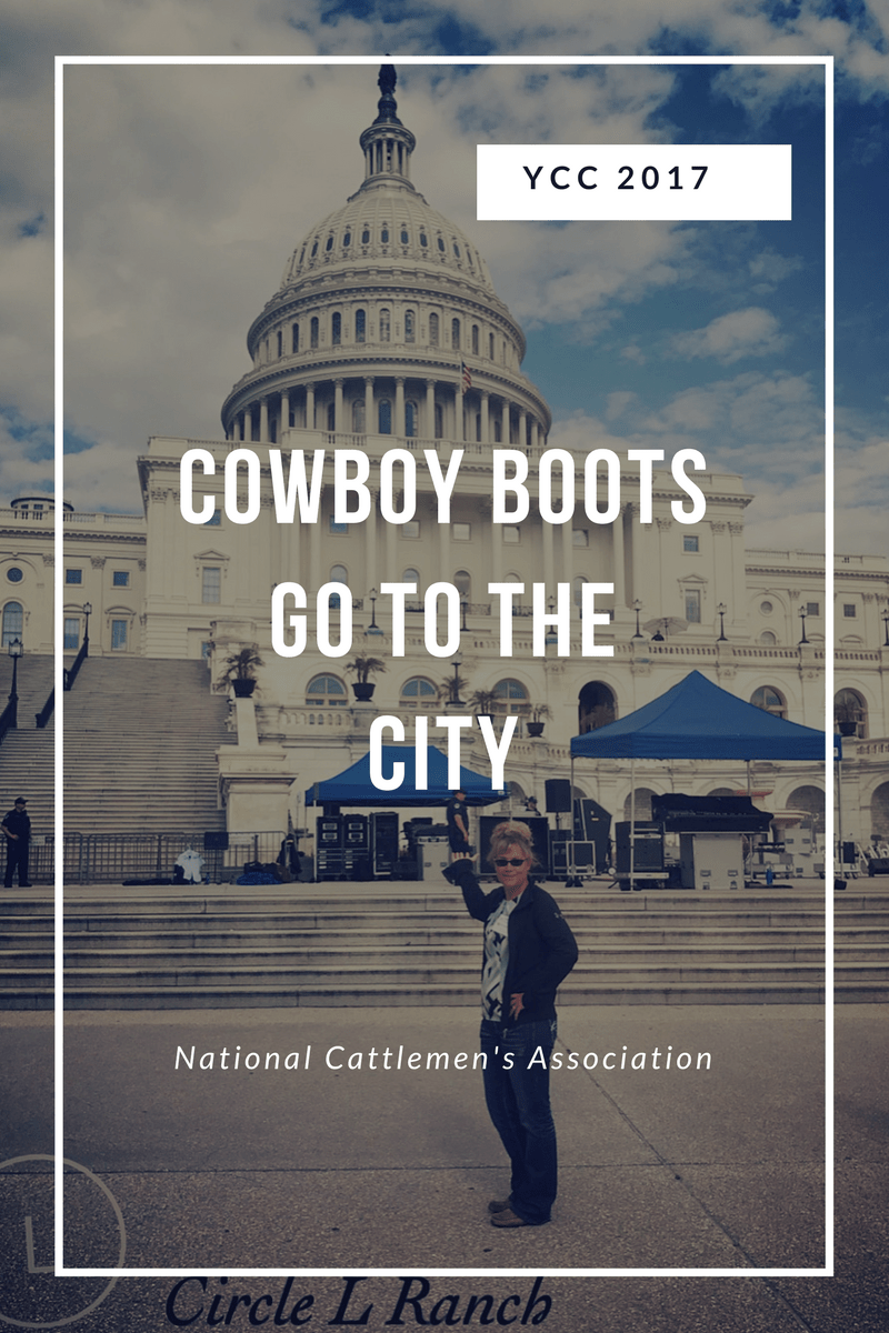 Cowboy Boots Go To The City