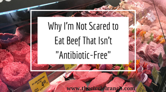 Why I'm Not Scared To Eat Beef That Isn't  Antibiotic Free  (2)