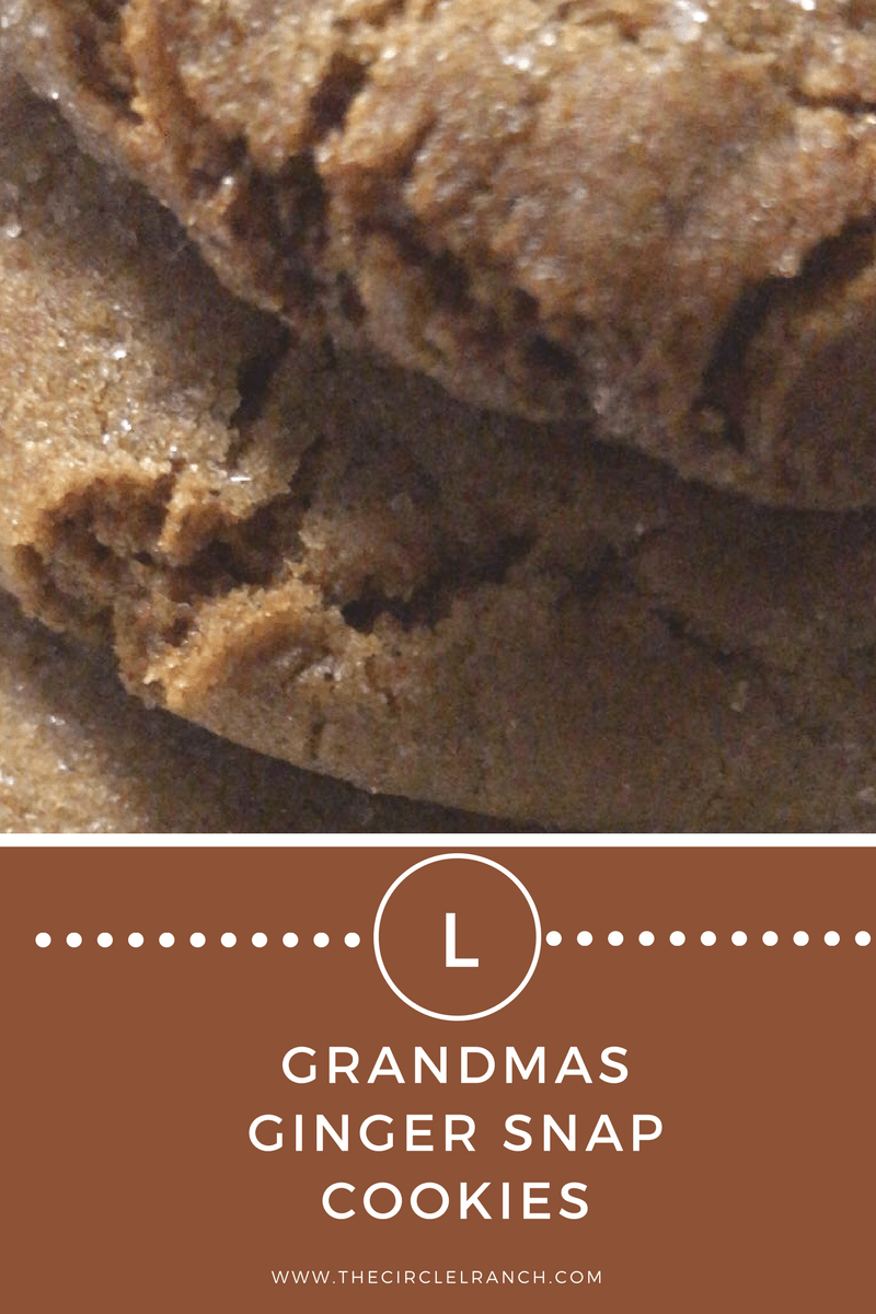 Grandma's Ginger Snap Cookies