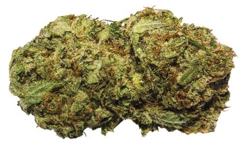 weed01