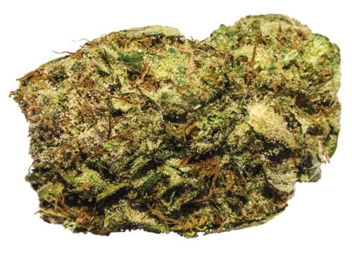 weed05