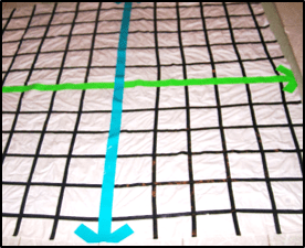 teaching coordinate graphing, huge shower curtain grid