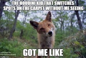 teacher humor, the houdini kid got me like... #teacherproblems