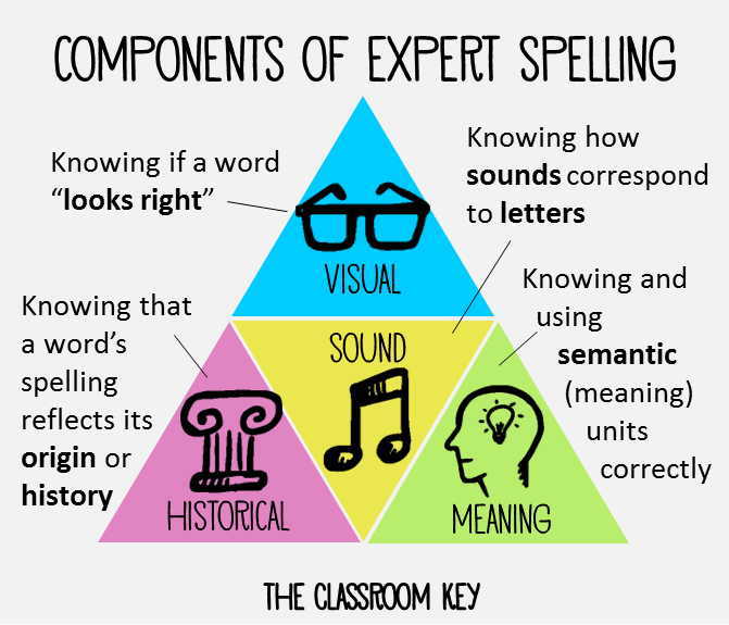 components of expert spelling