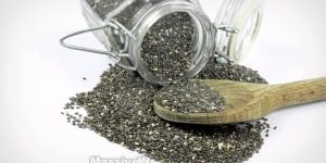 Don't Starve Yourself: Facts About Chia Seeds And Weight Loss That You Need To Know