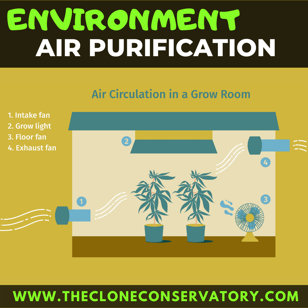 Regulation of the Air
