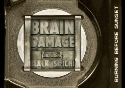 Brain Damage - Burning Before Sunset - Jarring Effects