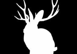 Miike Snow – Animal EP