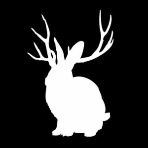 Miike Snow - Animal EP - Columbia