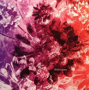 Cesar Merveille & Pablo Cahn - Split EP - Cadenza