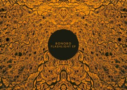 Bonobo – Flashlight EP