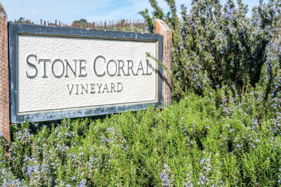 How to see Pismo Beach; Stone Corral Vineyard lavender nature