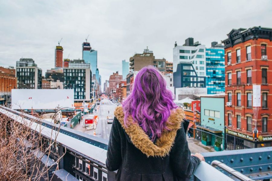 48 hours in New York; highline observatory