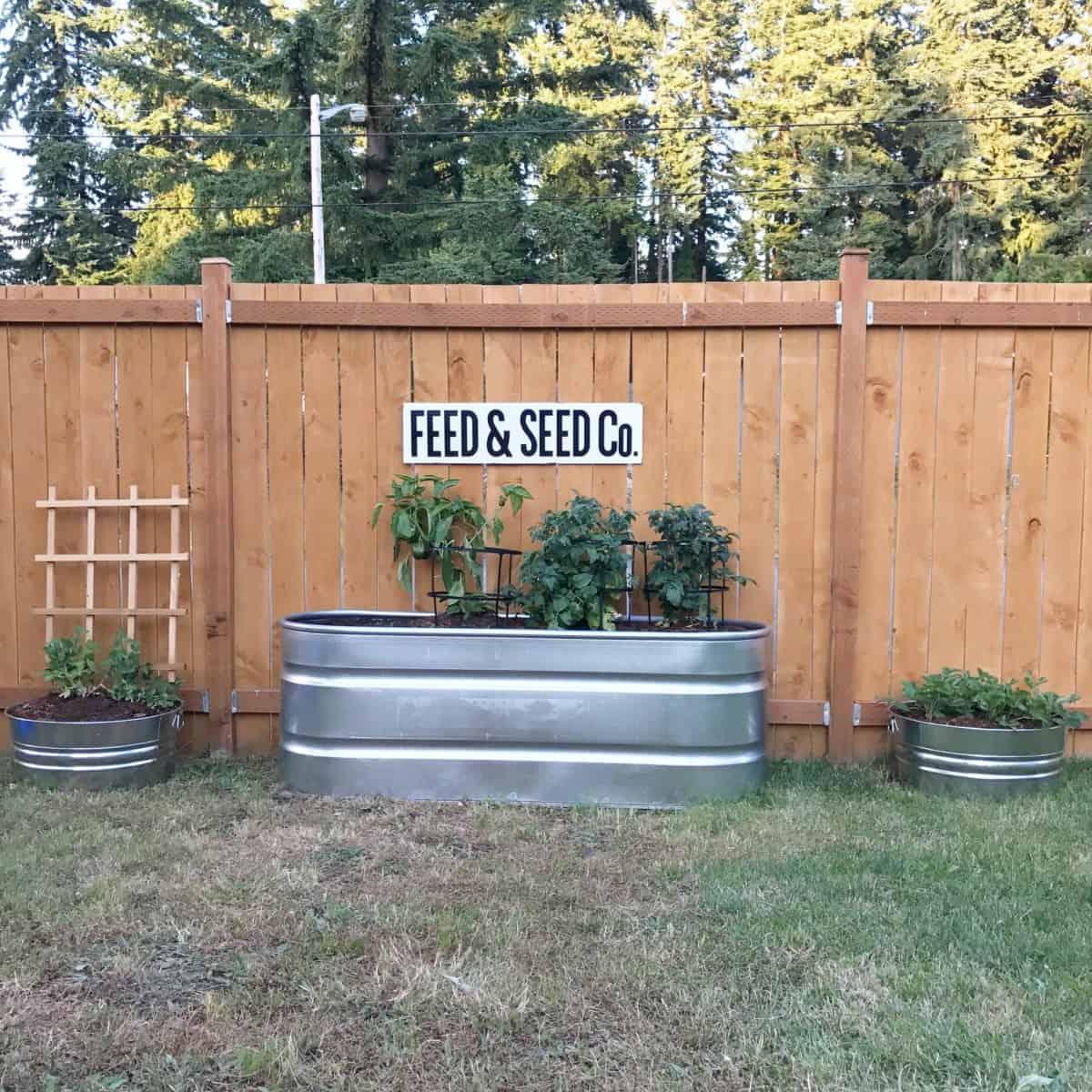 Dreaming of Homemaking DIY Raised Garden