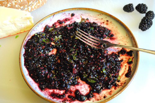 blackberry fontina grilled cheese recipe