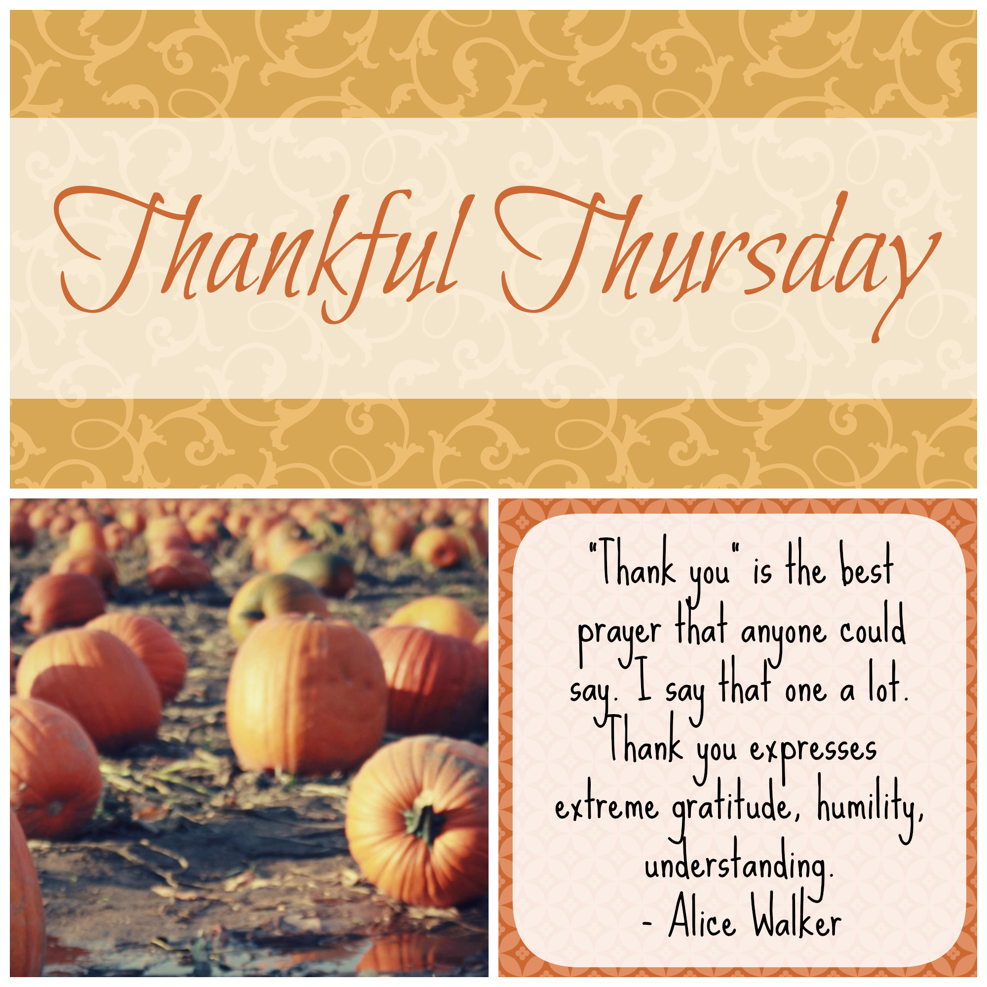 Thankful Thursday Give Thanks With A Grateful Heart The Coers Family