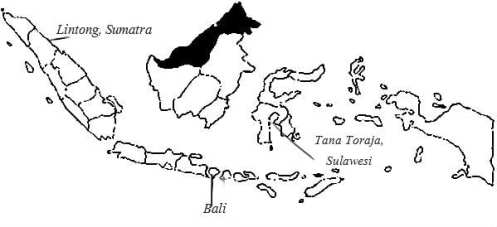 PICTURE IV-INDO COFFEE MAP