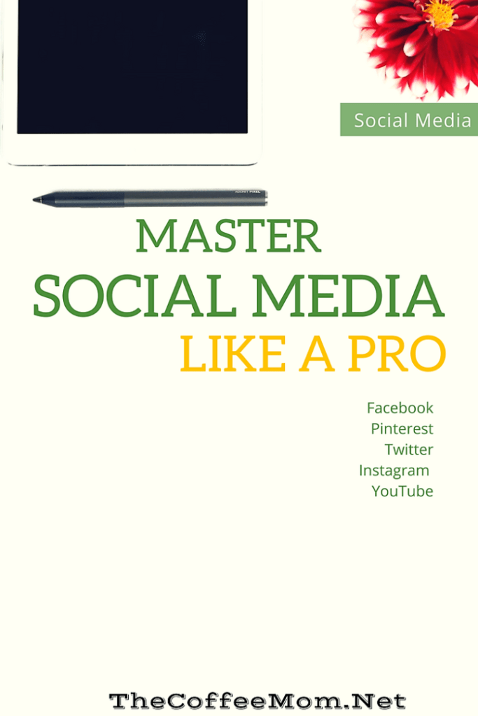 Become a Pofessional Blogger and make money by mastering social media!