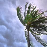 hurricane season prep