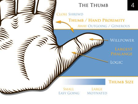 palm reading thumb hand