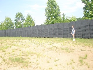 Sherrie Wilcox and FEMA Coffins