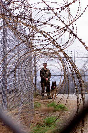 069-0101150210-fema-camp-soldier-dog-fence