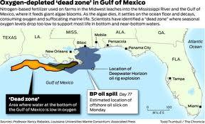 gulf dead zone