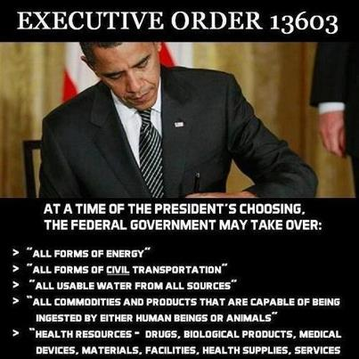 """According to EO 13603, the President, or the head of any federal agency that he shall designate, can conscript """"persons of outstanding experience and ability without compensation,"""" in both """"peacetime and times of national emergency."""" I can hear the Obama supporters now as they will write to me and say, """"Obama would never do that, you are drinking from the Kool-Aid"""". Well, here it is, you can read it for yourself. Sec. 502. Consultants. The head of each agency otherwise delegated functions under this order is delegated the authority of the President under sections 710(b) and (c) of the Act, 50 U.S.C. App. 2160(b), (c), to employ persons of outstanding experience and ability without compensation and to employ experts, consultants, or organizations. The authority delegated by this section may not be redelegated. This means that Obama, and his fellow communists, can seize any resource, property, or person at any time for any reason, including being able to force that person to perform assigned labor without being paid. There is only ONE word for forced, """"uncompensated employment"""". That would is slavery. Congratulations President Obama, you have effectively repealed the 13th Amendment to the Constitution. Section 601 of the act specifies, in part, how far the government can go in terms of making you their slave. Sec. 601. Secretary of Labor. (a) The Secretary of Labor, in coordination with the Secretary of Defense and the heads of other agencies, as deemed appropriate by the Secretary of Labor, shall: (1) collect and maintain data necessary to make a continuing appraisal of the Nation's workforce needs for purposes of national defense; (2) upon request by the Director of Selective Service, and in coordination with the Secretary of Defense, assist the Director of Selective Service in development of policies regulating the induction and deferment of persons for duty in the armed services; (3) upon request from the head of an agency with authority under this order, consult """