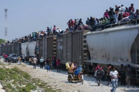 immgration the beast train