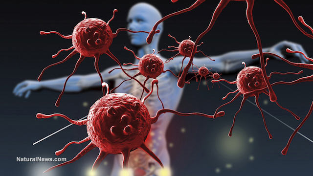 https://i2.wp.com/www.thecommonsenseshow.com/siteupload/2014/10/adams-protect-against-ebola1.jpg