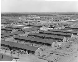 "Formerly a WW II detention center for Japanese-American citizens is now home to security detention training for what is popularily called ""FEMA camps""."